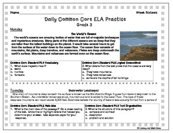 Grade 3 Daily Common Core Reading Practice Weeks 16-20 {LMI}