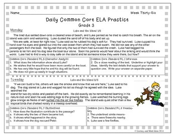 Grade 3 Daily Common Core Reading Practice Weeks 36-40 {LMI}
