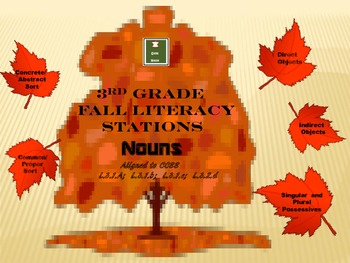 Grade 3 Fall Literacy Stations: Nouns
