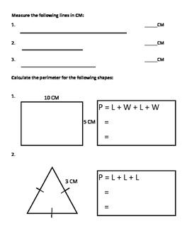 Grade 3 Math Test: Measurement - Mass, Capacity, Distance, Perimeter, Area