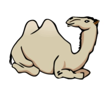 Grade 3 Module 1 Unit 3 My Librarian is a Camel