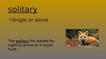 Grade 3 - MyView 2020 Literacy: Unit 2 - Week 4 - Story Vocabulary PPT