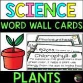 Plants Vocabulary- with definitions