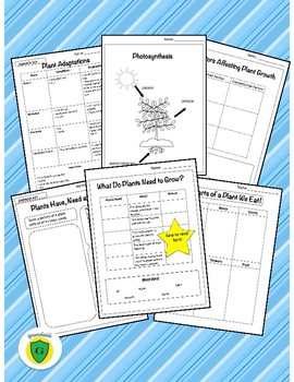 Grade 3: Science: Growth and Changes in Plants BUNDLE