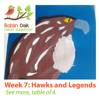 Grade 3 | Wk 07 | Hawks and legends
