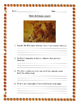 Classifying Plants and Animals Guided Notes and More! Grade 4 Scott Foresman