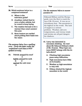 Grade 4 Common Core Language and Writing Practice #3
