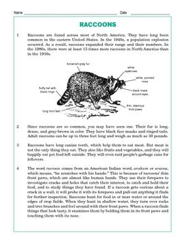 Grade 4 Common Core Reading: Raccoons