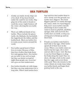 Grade 4 Common Core Reading: Sea Turtles