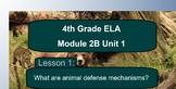 Grade 4 Engage NY Module 2B Unit 1 Lesson 1