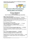 Grade 4+ Grammar Activity 2: Types of sentences  & Journal Entry