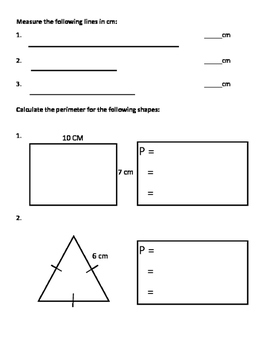 Grade 4 Math Test: Measurement - Mass, Capacity, Distance, Perimeter, Area