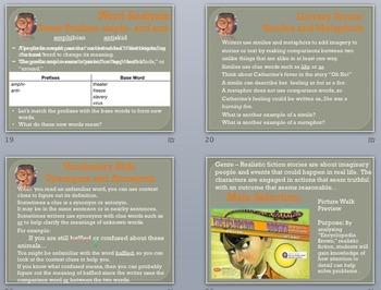 Grade 4 Reading Street Unit 4 Story Presentations