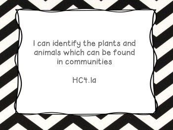 Grade 4 Science I Can Statement Posters Black and White Chevron