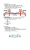 Grade 5 Bridges Explanation Sheet- Structures Unit