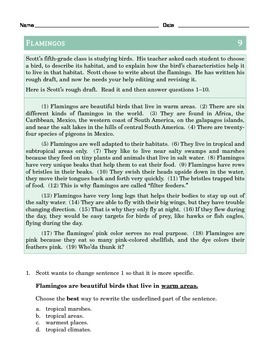 Grade 5 Common Core Language: Editing & Revising Practice FREE SAMPLE