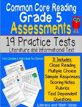 Grade 5 Common Core Reading Assessments (19 Assessments)
