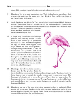 Grade 5 Common Core Reading: Two Passages about Flamingos