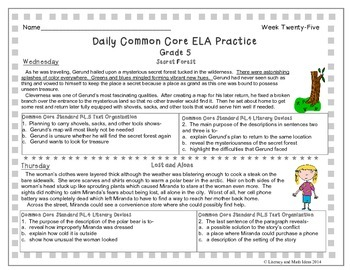 Grade 5 Daily Common Core Reading Practice Week 25 {LMI}