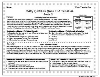 Grade 5 Daily Common Core Reading Practice Weeks 21-25 {LMI}