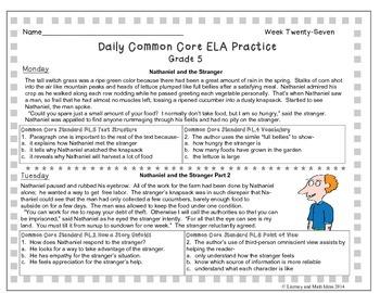 Grade 5 Daily Common Core Reading Practice Weeks 26-30 {LMI}