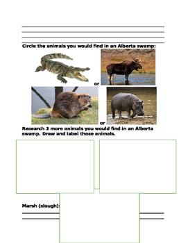 Grade 5 Science Wetlands Unit