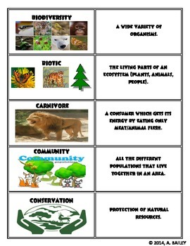 Grade 5 Ecosystem Vocabulary Cards