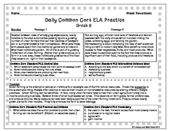 Grade 6 Daily Common Core Reading Practice Week 17 {LMI}