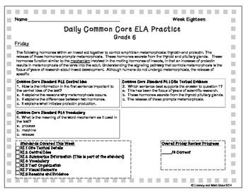 Grade 6 Daily Common Core Reading Practice Week 18 {LMI}