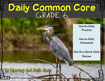 Grade 6 Daily Common Core Reading Practice Weeks 1-5 {LMI}