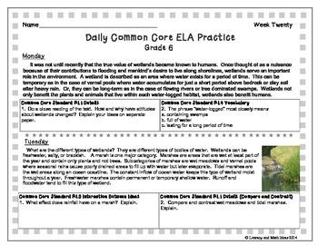 Grade 6 Daily Common Core Reading Practice Weeks 16-20 {LMI}