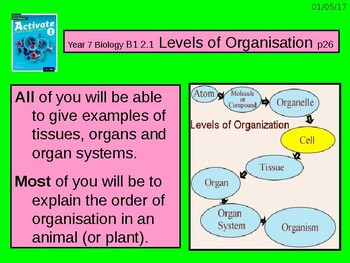 "Grade 6 lesson on ""Levels of Organisation"" for use with Activate 1 Science book."