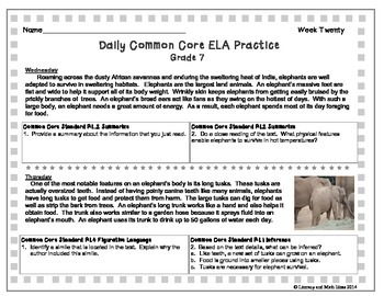 Grade 7 Daily Common Core Reading Practice Week 20 {LMI}
