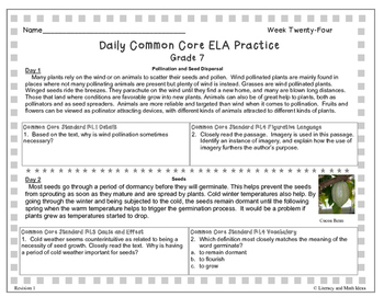 Grade 7 Daily Common Core Reading Practice Week 24 {LMI}