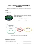 Grade 9 - Biology Lesson 03 - Food Webs and Ecological Pyramids
