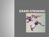 Gram-staining