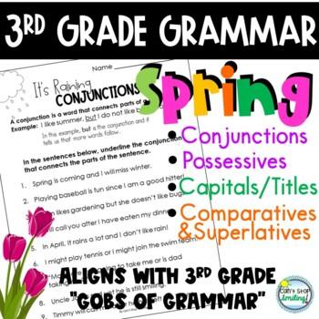 Spring 3rd Grade Grammar