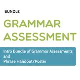 Grammar Assessment: Intro Bundle of Grammar Pretests and H