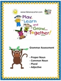 Grammar Assessment: proper and common noun, adjectives, and plural nouns