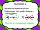 Grammar Basics Competition 1