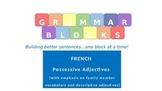 "Grammar Blocks - French Possessive Adjectives with emphasis on ""family"" vocab"