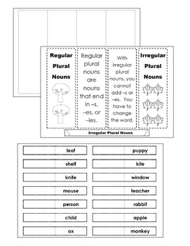 Irregular Plural Nouns Interactive Grammar Practice