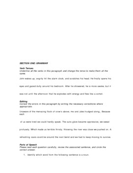 Grammar Lesson Lecture Notes & Worksheets with Final Assessment