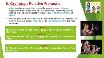 """Grammar Lesson on Relative Pronouns - """"Getting to Know Real Bats"""""""