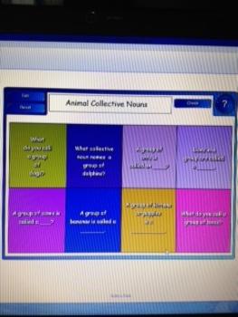 2nd Grade Common Core Grammar 2.L.1 Lessons and Practice SMARTBoard