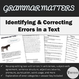 Grammar Matters 4 - Editing task with error categories explained