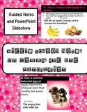 Middle School Grammar Guided Notes on End Marks and Commas