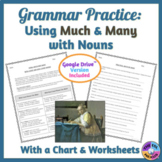 Using Much and Many with Nouns Grammar Practice