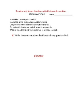 Grammar Punctuation Practice/Quiz *answer key included