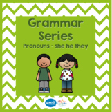 Grammar Series - Pronouns  (She He They)